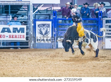 LOGANDALE , NEVADA - APRIL 10 : Cowboy Participating in a Bull riding Competition at the Clark County Fair and Rodeo a Professional Rodeo held in Logandale Nevada , USA on April 10 2015  - stock photo