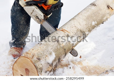 Logger cutting wood with chainsaw to make firewood - stock photo