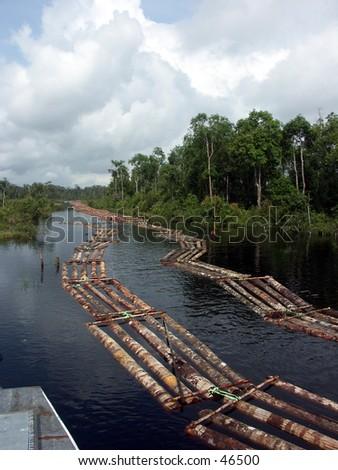 Logging activity at river - stock photo