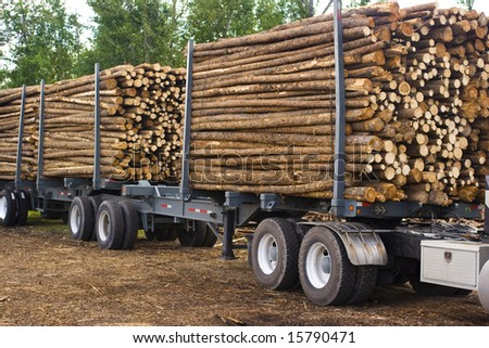 logging truck and trailer - stock photo