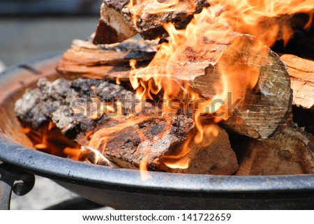 Logs burning in a fire pit - stock photo