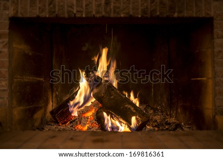 Logs burning in fireplace. - stock photo
