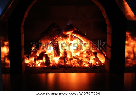 Logs burning in the oven