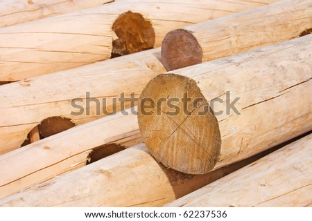 Logs for house building - stock photo