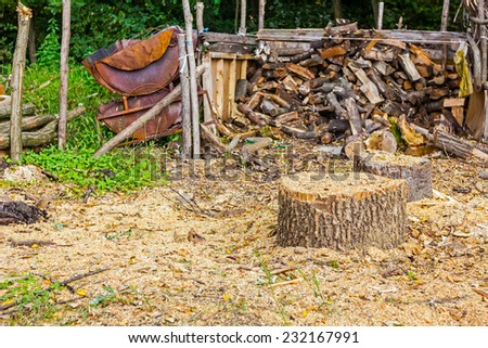 Logs of wood stacked and ready for selling or other usage