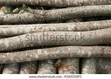 Logs on the grass. - stock photo