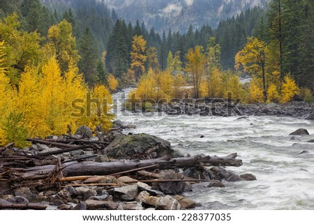 Logs on the river bank in Autumn near Leavenworth, Washington.