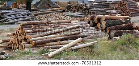 Logs timber industry trunks stacked outdoor stock