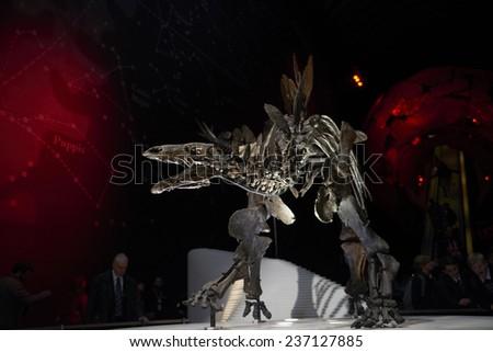 LONDON, UK - DECEMBER 11: Detail of Stegosaurus skeleton at the Natural History Museum. December 11, 2014 in London. The new skeleton went on display at the museum on the 4th December 2014. - stock photo