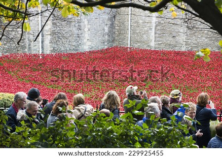 LONDON, UK - NOVEMBER 08: Crowd admiring art installation by Paul Cummins at Tower of London. November 08, 2014 in London. The ceramic poppies were planted to mark the centenary of WWI's outbreak. - stock photo