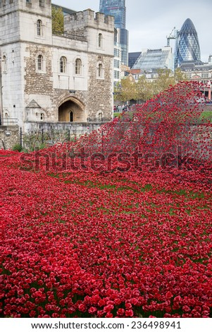 LONDON, UK - NOVEMBER 10:Poppies at the Tower of London, in London on the 10 November, 2014 in London, UK - stock photo