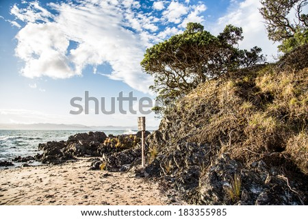 Lone beach on the Coromandel peninsula, New Zealand, with rocks, trees and old broken plate in the evening sunlight. - stock photo