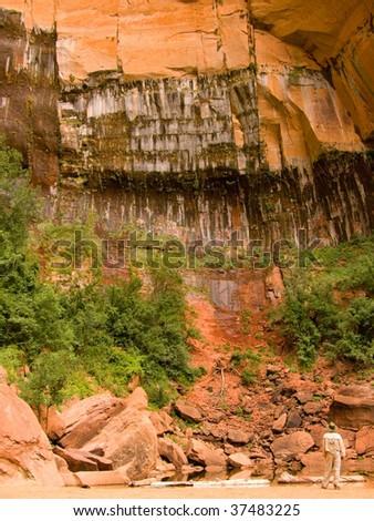 Lone Explorer Upper Emerald Pools Zion National Park Utah - stock photo