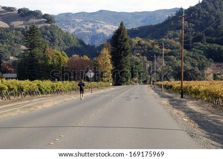 Lone Jogger among the Vineyards near Windsor, CA. - stock photo