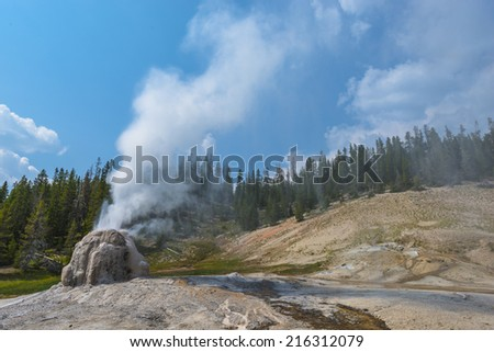 Lone Star Geyser during eruption Yellowstone National Park - stock photo