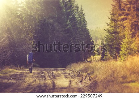 Lone traveler with a backpack walking along the road through the forest in the mountains.Filtered image:cross processed vintage effect.  - stock photo