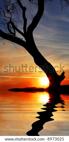 lone tree in flood - stock photo