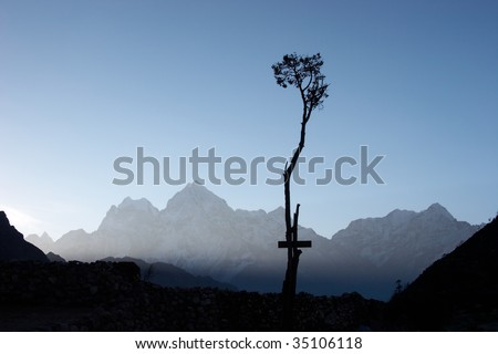 Lone tree in Himalayas, Nepal - stock photo
