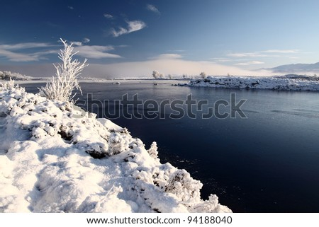 Lone tree on a snow covered rannoch moor in the Scottish highlands - stock photo