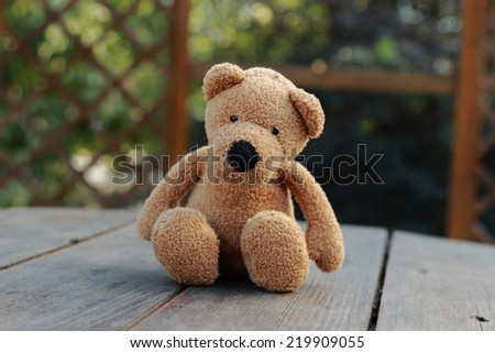 Loneliness Teddy Bear sitting in the garden/Concept about loneliness - stock photo