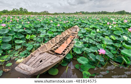 Lonely boat on the field Selective focus Pink Lotus flower and plants blurred in countryside