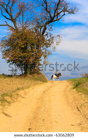 Lonely horse rider on a dirt track - stock photo