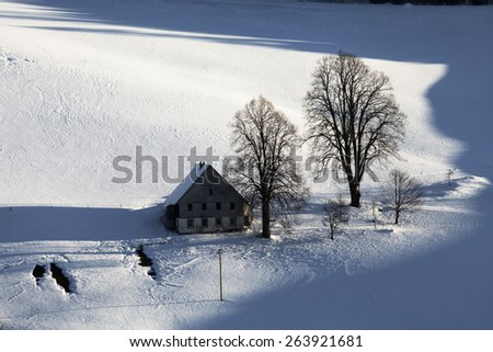 lonely house an two trees in the snow - stock photo
