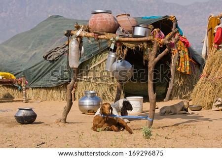 Lonely house in the desert near Pushkar, India - stock photo