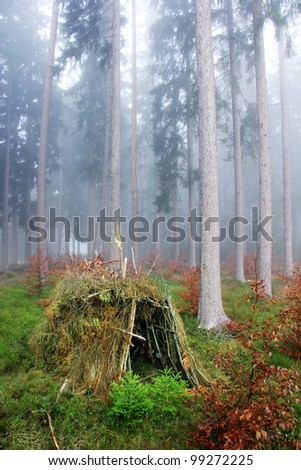 lonely hut in the forest with fog - stock photo