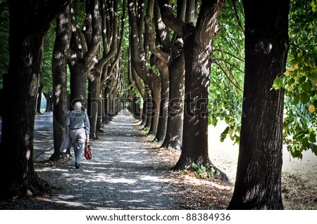 Lonely old businessman in tree alley - stock photo