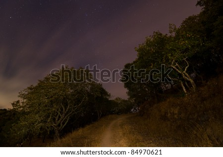 Lonely path with stars and clouds in the sky at night - stock photo