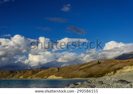 Lonely pine tree on a hill near  Lake Tekapo against blue sky with big white clouds. South Island, New Zealand - stock photo