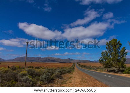 Lonely road with beautiful landscape in the Little Karoo in South Africa