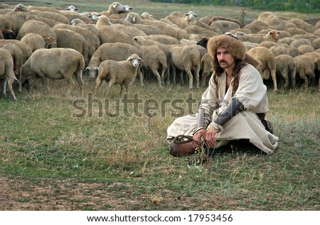 Lonely shepherd with sheep on green meadow traditional culture - stock photo