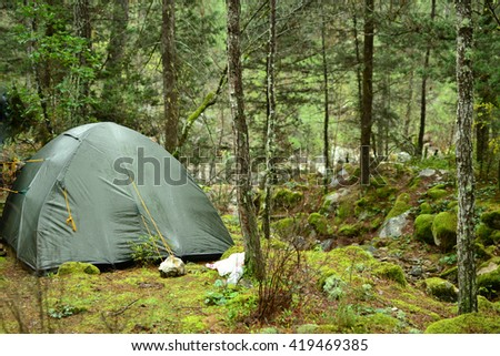 Lonely tent in the forest. Turkey; Lycian way.