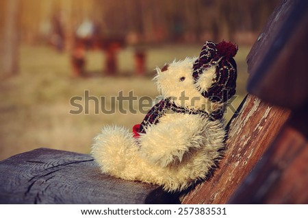Lonely toy bear relax on bench a sunny day - stock photo
