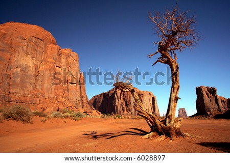 Lonely tree in Monument Valley, Utah - stock photo