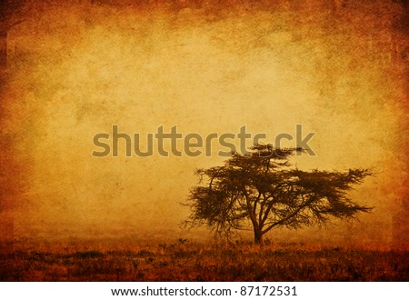 Lonely tree in the mist, grunge background, nature autumn season, african landscape in the morning, sepia toned - stock photo
