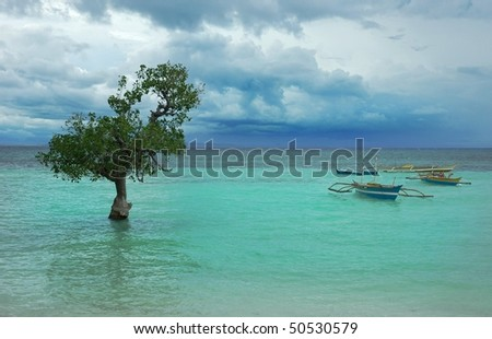 lonely tree in the turquoise water in Philippines - stock photo