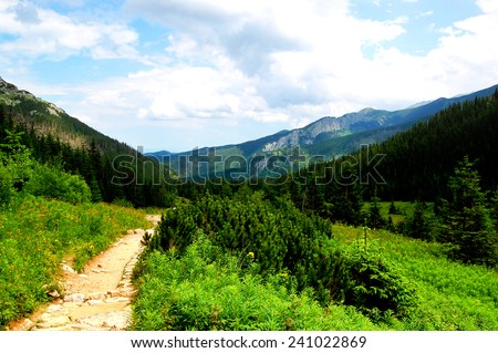 Lonely tree on a background of mountains - stock photo