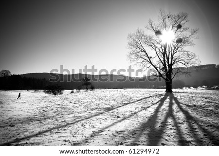 lonely tree with girl - stock photo