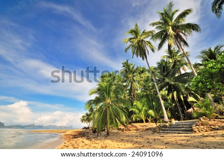 Lonely Tropical Beach in the Morning - stock photo