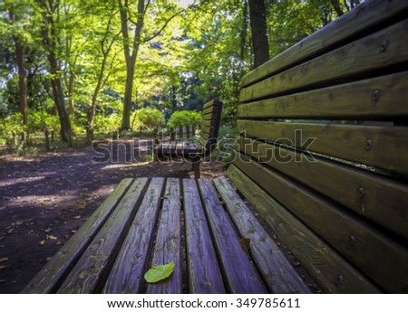 Lonely wooden bench at a park.Wood Benches and Park,in Japan - stock photo