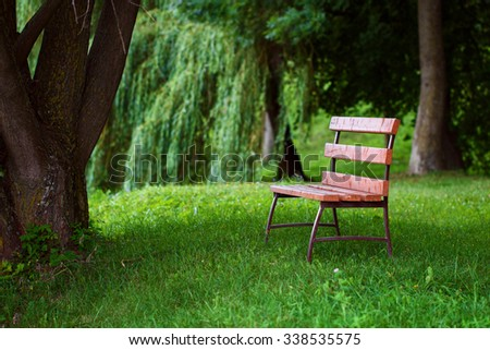 Lonely wooden bench covered with sunbeams is on the grass in shade under tree, in park in summertime. Tinting image. Concept of loneliness and waiting - stock photo