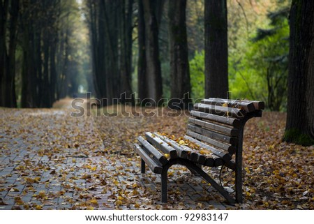 Lonely wooden bench in autumn park under leaves - stock photo