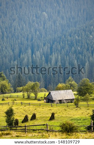 Lonely wooden house in a mountain forest - stock photo