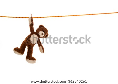 Lonesome isolated plush teddy bear hanging on a clotheline on white background. - stock photo