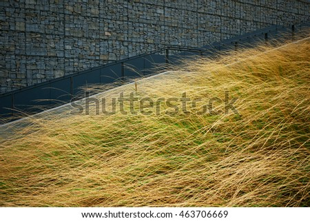 long and tall grass,outdoor,stairs,green grass,park,objects,nature,