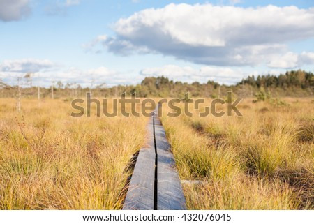 Long boardwalk into infinity - stock photo