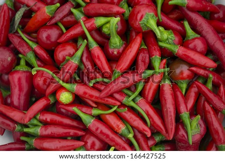 long chilly peppers  - stock photo